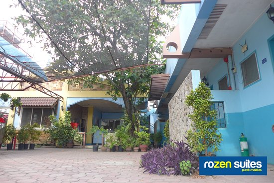 Rozen Suites Malakas: The Tambis Tree at the ground floor and Lanai
