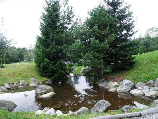 Botanicka zahrada - Expozicia Tatranskej prirody: jezírko