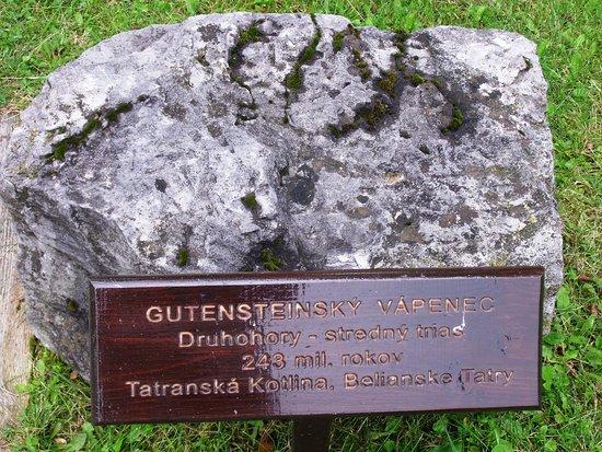 Botanicka zahrada - Expozicia Tatranskej prirody: Vápenec z Druhohor