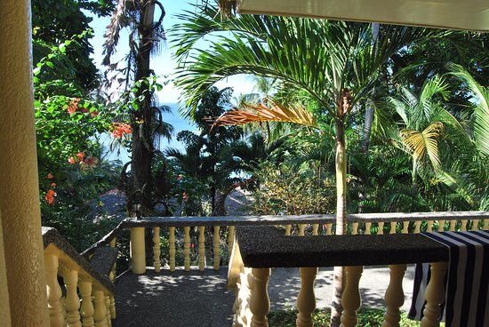 Easy Diving and Beach Resort: Our view from the terrace