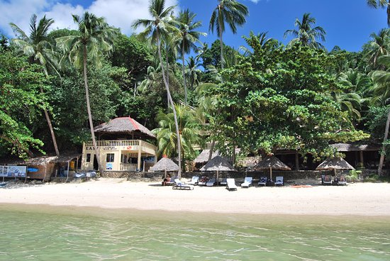 Easy Diving and Beach Resort: The beach