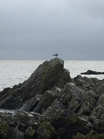 Rockcliffe, UK: photo1.jpg