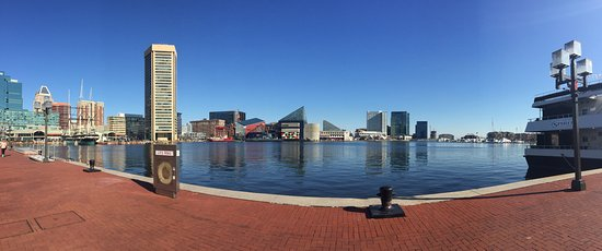 Inner Harbor: A little wider view