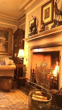 Bontnewydd, UK: Drawing room fire