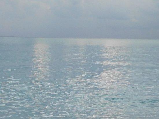 Haa Alif Atoll: IMG_20170303_173929_large.jpg