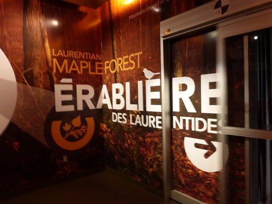 مونتريال, كندا: Montréal Biodôme