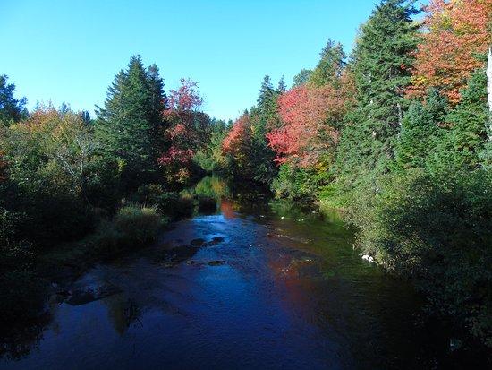 Souris, Canada: Fall colours.