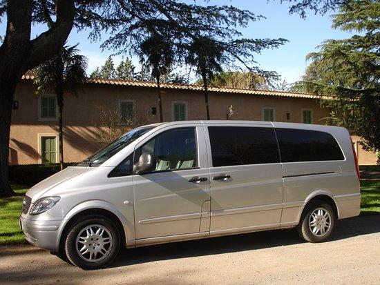 Private Touren in Rom Und Ganz Italien: Mercedes VAN 1-8 Passagiere