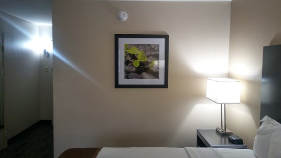Best Western Northwest Indiana Inn: 20170309_132452_HDR_large.jpg