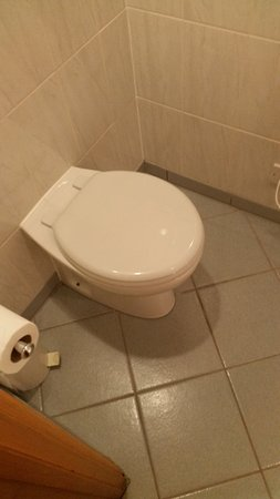 Newton Aycliffe, UK: WC - ultra clean