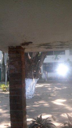 Hotel Piedras del Sol Acapulco Diamante: CAM00091_large.jpg