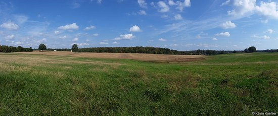 Spotsylvania, VA: The view from Highway 3 or Plank road, to the Battlefield.