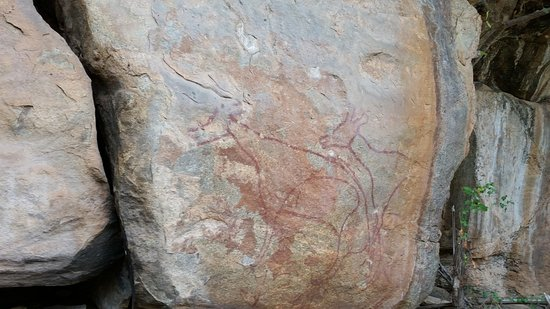 Chinnar Wildlife Sanctuary: Prehistoric animals paintings