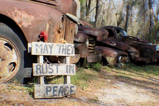Crawfordville, FL: Rusted Ford Trucks - stories to tell. May they rust in peace! Amen