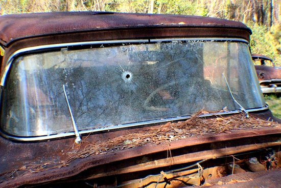 Crawfordville, FL: Rusted Ford Trucks - stories to tell. Was someone shot dead!!