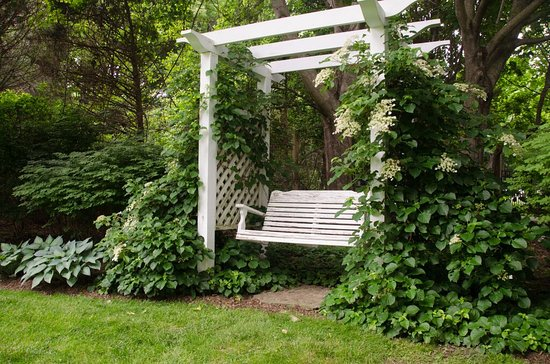 Blue Iris Bed and Breakfast: Swing Bench