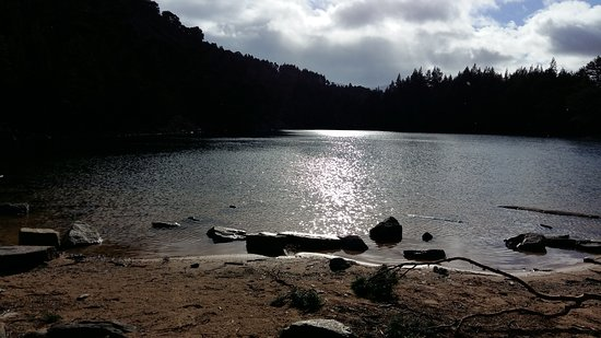 Aviemore, UK: Glenmore Forest Park