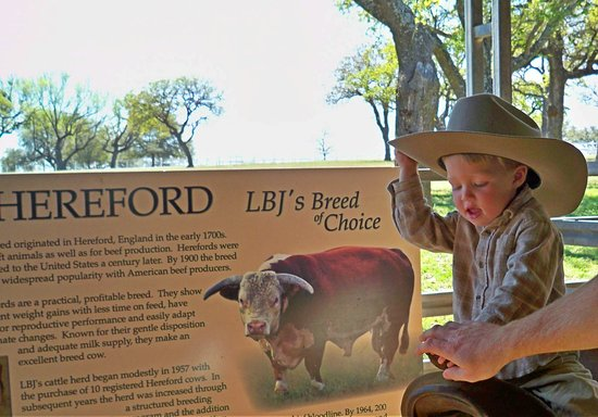 Stonewall, TX: Riding the [pretend] Hereford!!
