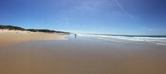 La Barrosa: Enorme playa de fina arena