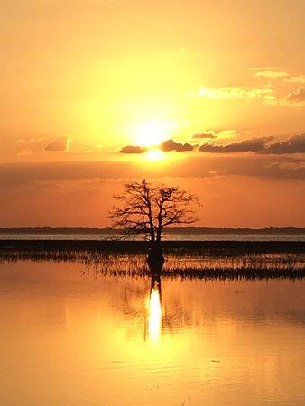 Kissimmee, Floryda: Beautiful sunset!