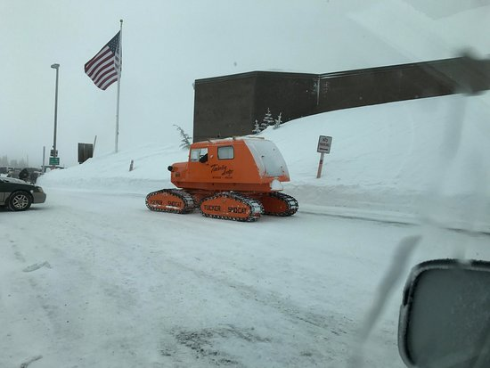 Timberline Lodge, OR: Snow Cat