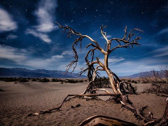 Desierto de California, CA: Death Valley at night