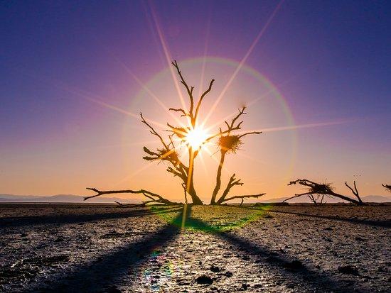 Desierto de California, CA: Salton Sea, California's Largest Lake