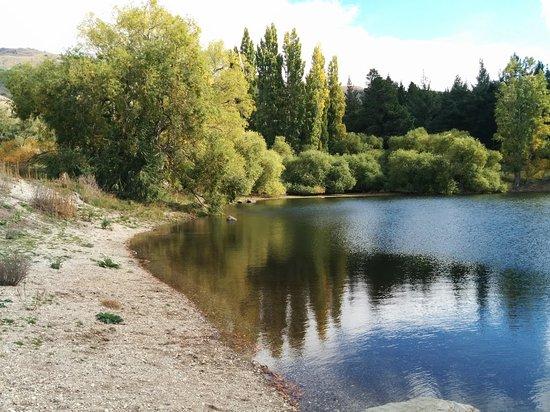 Roxburgh, New Zealand: Pinders Pond