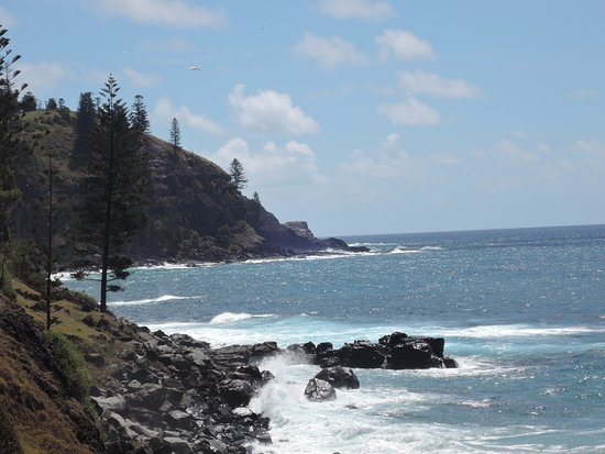 Reflections of Norfolk Island