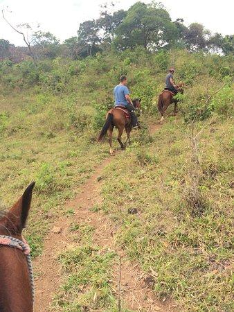 Franklin's Horseback Riding: photo1.jpg