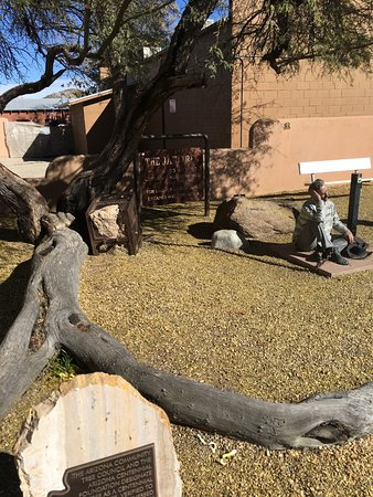 Wickenburg, AZ: The jail tree still stands.