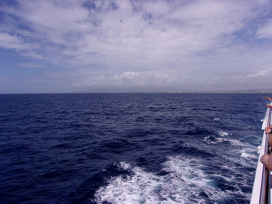 Star of Honolulu - Dinner and Whale Watch Cruises: No whales here