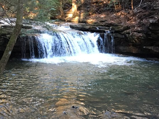 Grundy Forest Natural Area: Great Hike!