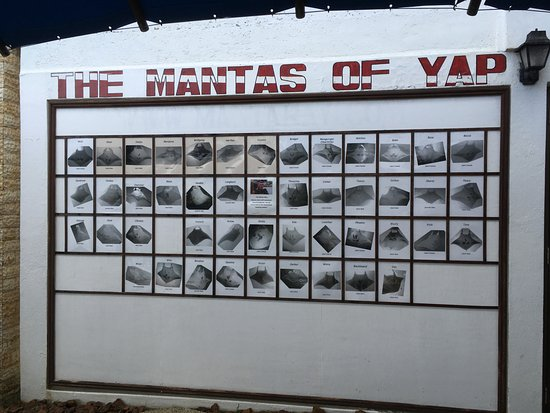 Colonia, Federated States of Micronesia: Yap Divers' Manta Board
