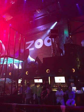 Zoo Bar: FB_IMG_1487662216135_large.jpg