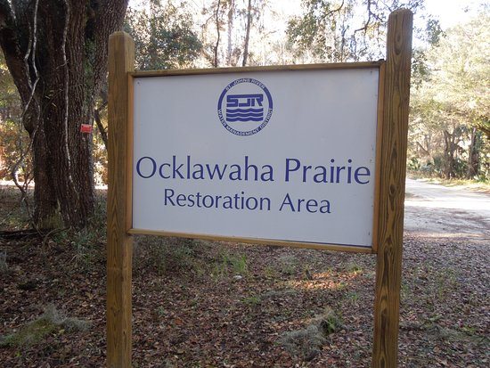 ‪‪Ocklawaha‬, فلوريدا: A little hard to find on a dirt road, but here's the sign when you get there‬