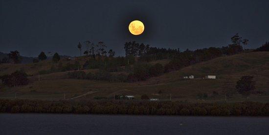 Kohukohu, Neuseeland: Moonrise across the harbour
