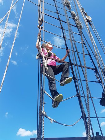 Sydney Harbour Tall Ships : A safe climb fully harnessed