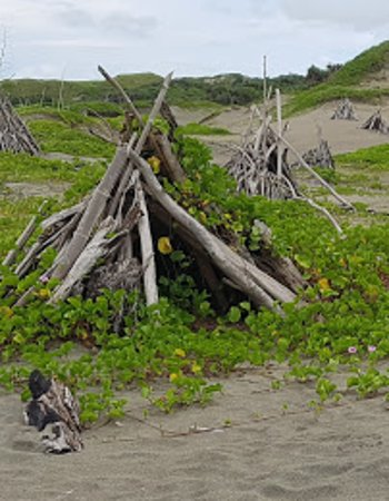 Sigatoka Sand Dunes National Park: Tee Pee City