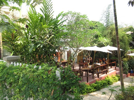 Big Tree Cafe: Outside dining area