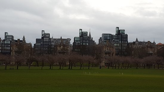 The Meadows: 20170311_080031_large.jpg