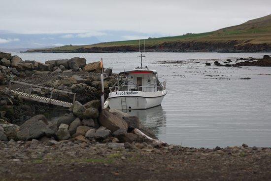 Saudarkrokur, Island: вид на море около Греттислауга
