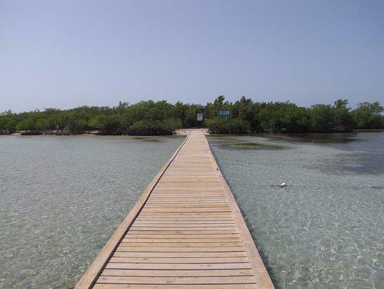 Aquarius Vacation Club: The dock at Guilligan Island