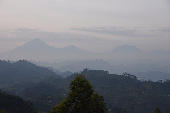 Potret Nkuringo Bwindi Gorilla Lodge