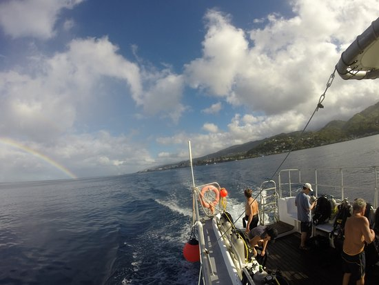 Roseau, Dominica: heading out for morning dive.