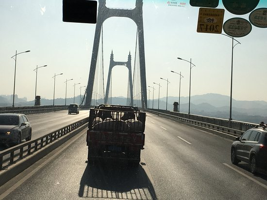 The 2nd Xiangjiang Bridge