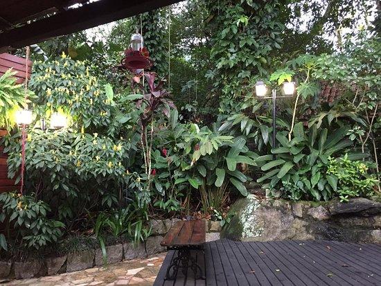 Aratinga Inn照片