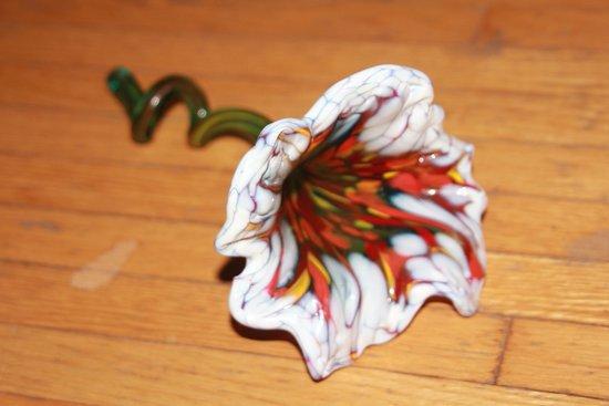Corning, Estado de Nueva York: My wife's flower, Wow!