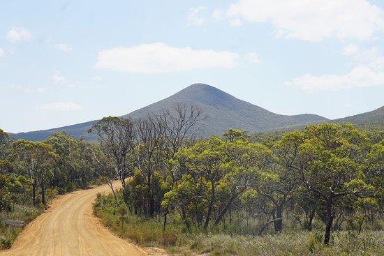 Mount Barker, Austrália: Road on Porongurup NP