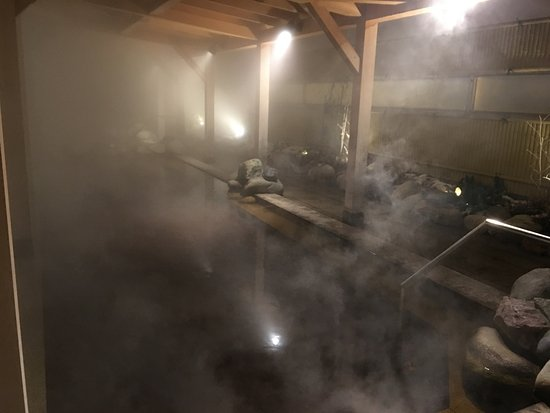 New Chitose Airport Onsen : Female Outdoor Onsen